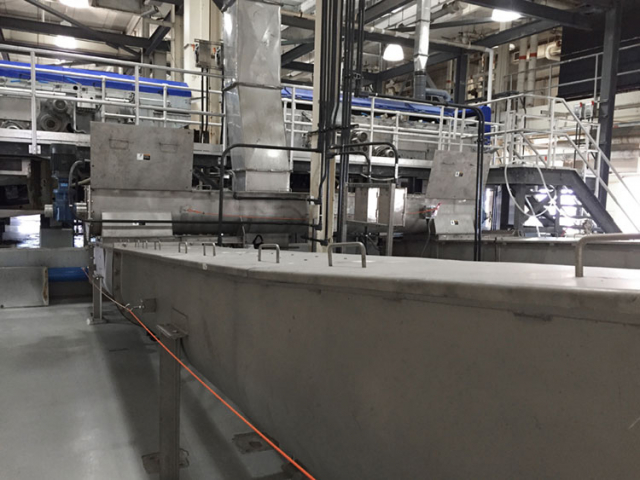 Dried sludge conveyor system